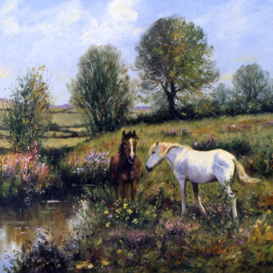Robert Harcus - By the Dereen river