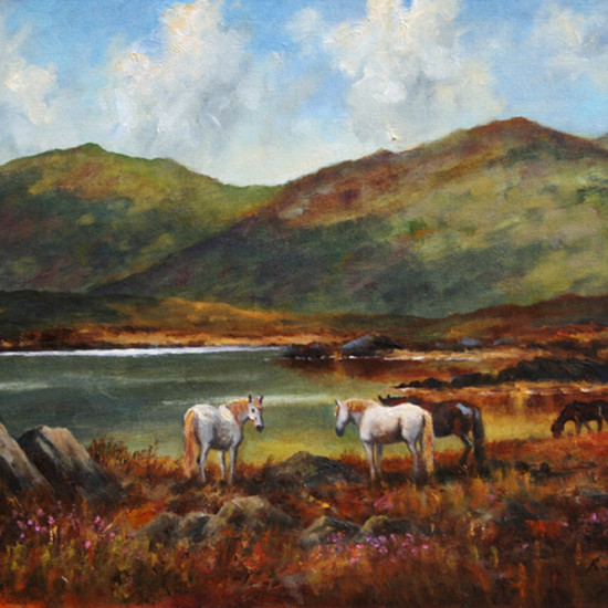 Robert Harcus - Connemara ponies near Clifden