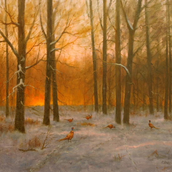 Robert Harcus - Pheasants at dawn