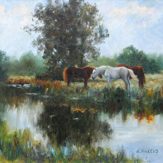 Robert Harcus - Reflections near Cashel