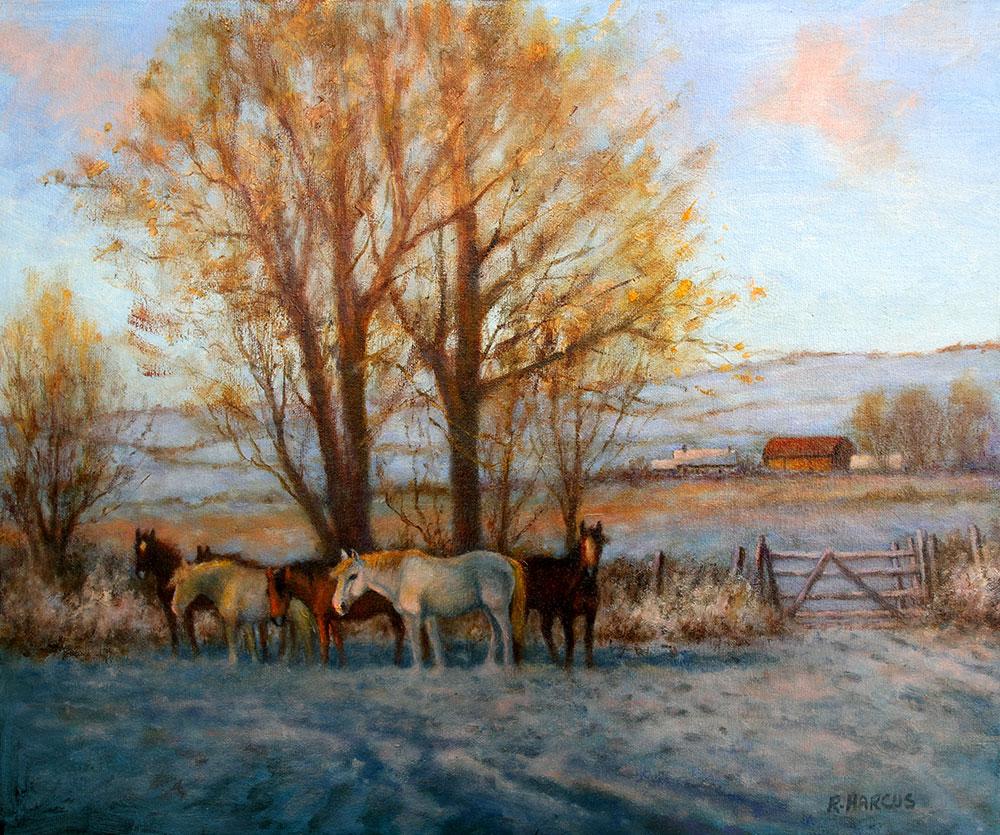 Robert Harcus - January Morning